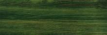 Olej-voskový prostředek na dřevo Hard Wax Oil - Dark green 548