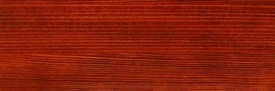 Pterocarpus 670